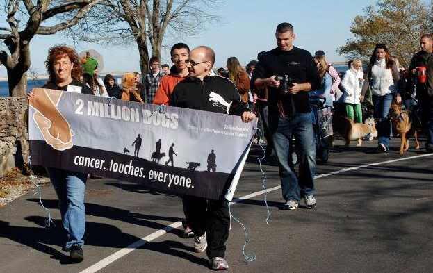 New Jersey Walk Banner